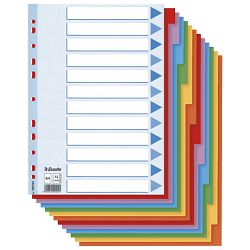 Pregrada kartonska A4 kolor 12listova Esselte 100194