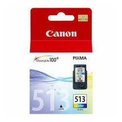 Tinta CANON CL-513