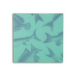 Ploča Datazone magnetna staklena (zidna) nature mgb-4040cf1 40x40cm