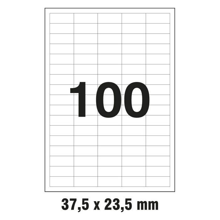 000006463_1.jpg